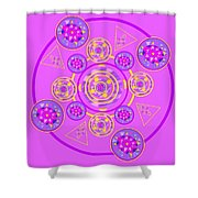 The Universal Spin Of Violet Shower Curtain