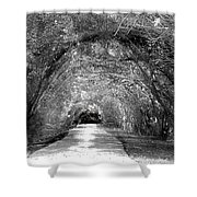 The Unknown II Shower Curtain