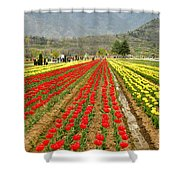 The Valley Blooms Shower Curtain