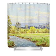 The Valley Stream Shower Curtain