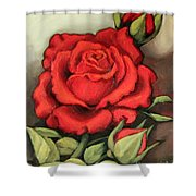 The Very Red Rose Shower Curtain