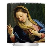 The Virgin Annunciate Shower Curtain