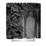 The Virgin Shower Curtain