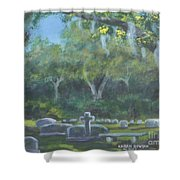 The Visitor 75usd Shower Curtain
