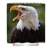 The Voice Of The Nature 2 Shower Curtain