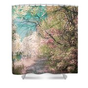 The Walkway Of Forgotten Dreams Shower Curtain