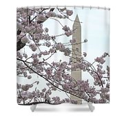 The Washington Monument At The Cherry Blossom Festival Shower Curtain