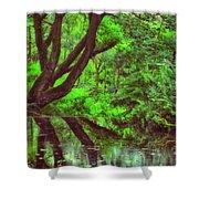 The Water Margins - Nutclough Woods Shower Curtain