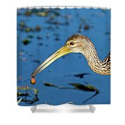 The Water's Edge Seafood Cafe Shower Curtain