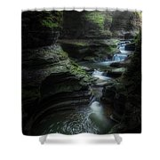 The Whirlpool Shower Curtain