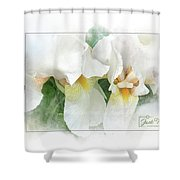 The Whispering Irises Shower Curtain