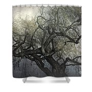 The Whispering Tree Shower Curtain
