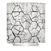 The White Painted Asphalt Shingle Shower Curtain
