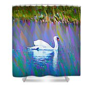 The White Swan Shower Curtain by Bill Cannon