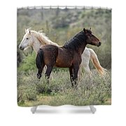 The Wild And Free  Shower Curtain