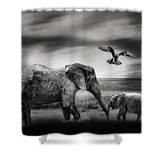The Wild Shower Curtain