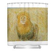 The Wild  Lion Shower Curtain