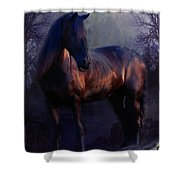 The Wild Mare Shower Curtain