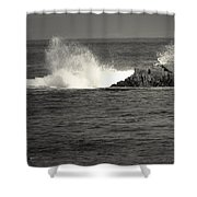 The Wild Pacific In Black And White Shower Curtain