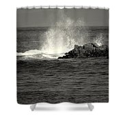 The Wild Pacific In Black And White Two Shower Curtain