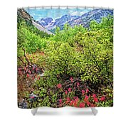 The Wildflowers Of Lundy Canyon Shower Curtain