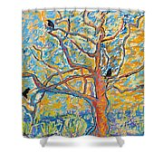The Wind Dancers Shower Curtain