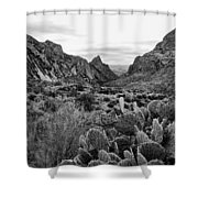 The Window 2 Black And White Shower Curtain