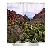 The Window 2 Shower Curtain