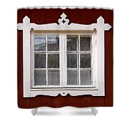 The Window 3 Shower Curtain