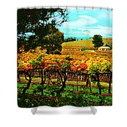 The Winemakers Residence Shower Curtain