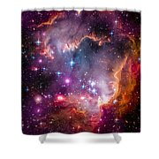 The Wing Of The Small Magellanic Cloud Shower Curtain