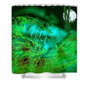 The Winged Terror Of Titicaca Shower Curtain