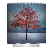 The Winter Berries Shower Curtain