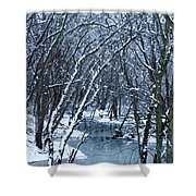 The Winter Stream  Shower Curtain