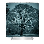 The Winter Tree Shower Curtain