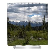 The World Beyond Shower Curtain