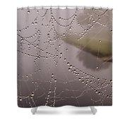 The World Through A Web Shower Curtain