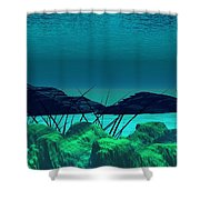 The Wreck Diving The Reef Series Shower Curtain