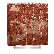 The Writings Of Lu Xun With Reflection Of Man Shower Curtain