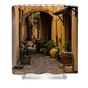 The Yellow Archway Shower Curtain