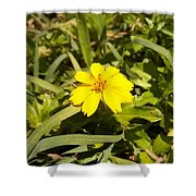 The Yellow Encamped Shower Curtain