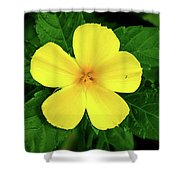 The Yellow Flower Shower Curtain