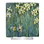 The Yellow Irises Shower Curtain