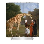 The Zoological Garden Shower Curtain