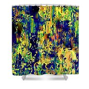 Theatrical Backstage Shower Curtain