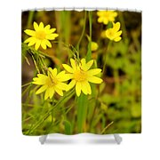 Thee Yellow Smiles  Shower Curtain