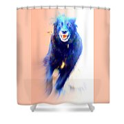 There Are Wild Dogs Living In The Mountains  Shower Curtain