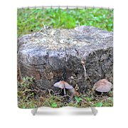 There Is A Fungus Among Us Shower Curtain