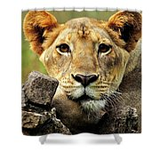 There Is No Fear In Love Shower Curtain