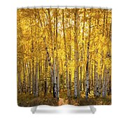 There's Gold In Them Woods  Shower Curtain